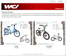 WCI WORLD CYCLE INDUSTRIAL